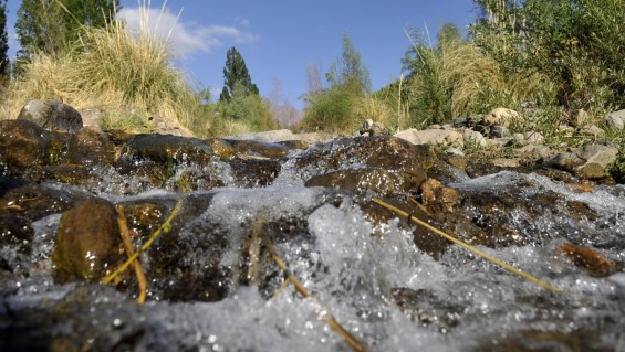 Dictarán taller sobre educación hídrica en Tupungato